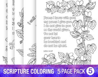 the piercing bible pdf full free download