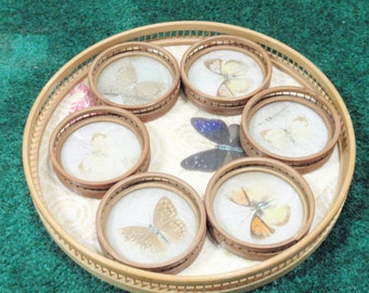 Vintage bambo tray with butterfly coasters