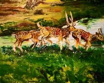"""14"""" X 18"""" Deer Painting- Oil"""