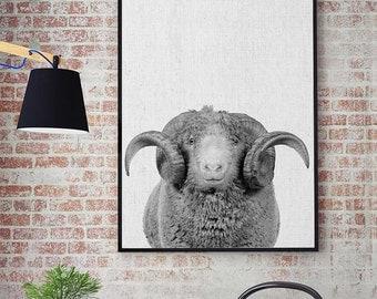 Ram Print, Farm Ram Art, Ram Head Wall Art, Farm Animal Nursery Decor, Black and White Animal Print, Printable Ram Horns, Arles Merino