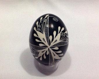 Beautiful black & white Ukrainian egg~hand painted pysanky egg