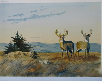 Deer watercolor painting, buck painting , landscape watercolor, original watercolor, mountain top, mountain view, pine trees, #61