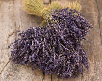 Lavender Bouquet - French Lavender - Provence Lavender
