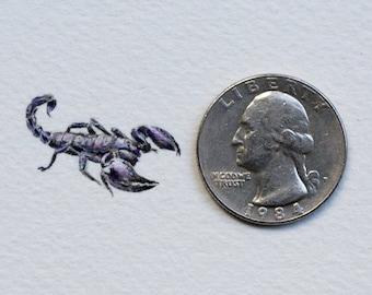 Original miniature watercolor painting of a Scorpion.