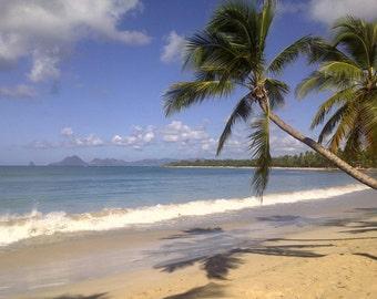Martinique... The salt pans