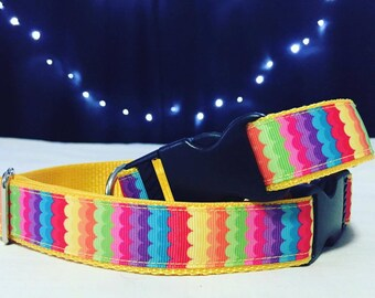 Rainbow Dog Collar