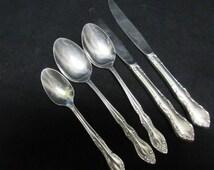 Stainless Steel Serving Spoons/Teaspoon/Knives-Royal Stainless Steel Japan-Unknown Floral Pattern