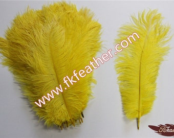 """12"""" -14"""" Ostrich Feather"""