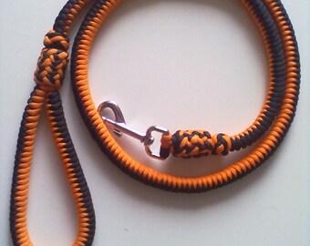 Paracord dog leash, strengthened.