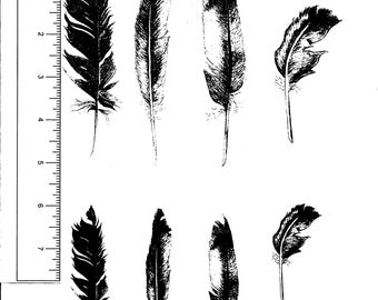 8 Feathers 4 medium 4 small Unmounted Rubber Stamps