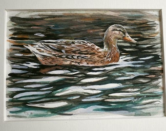Wild Duck / Mallard . Original Watercolor painting