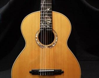 Acoustic Guitar. Cedar and Rosewood