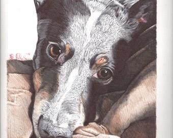 Ball Point Pen Dog Print