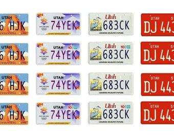 scale model Utah license tag plates