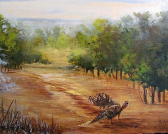 Gaggle of Turkeys  at Case Ranch Barbara Haviland,Barbsgarden,fine art,feathers