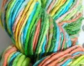Macaw-Handspun Yarn
