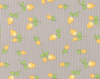 Sundrops - Rosebuds in Taupe: sku 29012-24 cotton quilting fabric by Corey Yoder for Moda Fabrics - 1 yard