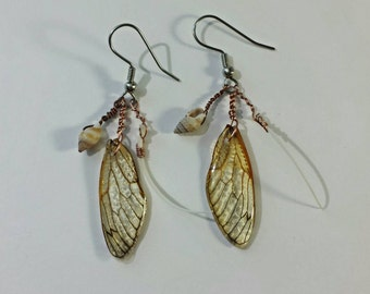 Curio Collection Earrings with Real Cicada Wings