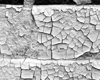 Textured Photo of Peeling Paint on a Brick Wall, Black and White Photograph, Miles City Montana