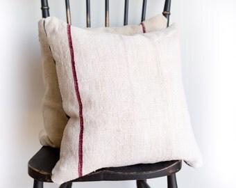 20X20 Linen Velvet Pillow