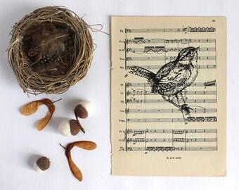 Perching Wren Print  Gocco Printed Bird Print on Vintage Music