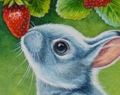 American Blue Bunny Rabbit & Strawberries Limited Edition ACEO Giclee Print reproduced from the Original Watercolor