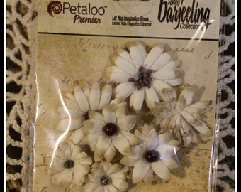 PRICE REDUCED!!! Darjeeling Mini Mix Tea Stained Cream Flowers