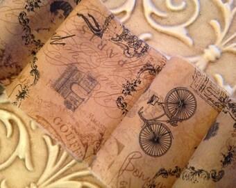 Old World French Trim  - Bonjour - Eiffel Tower - Arc de Triomphe - Old Time Bicycle - Paris Script -