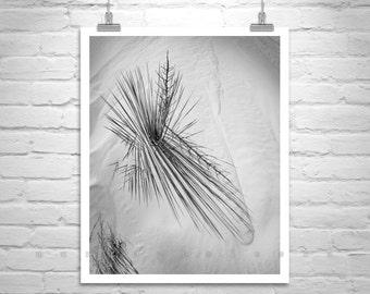 White Sands, Black and White, Elegant Art, New Mexico, Minimalism, Fine Art Photography, Desert Print, Vertical Wall Art, Abstract Art