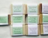 10 Sampler Soap Package Deal