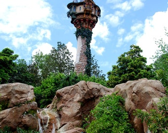 Walt Disney World Rapunzel Tower 8x10 Matte