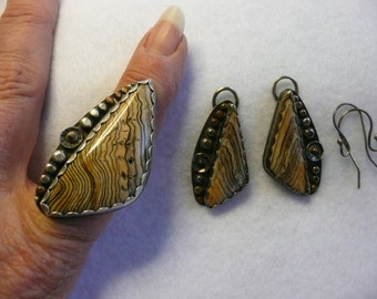 Hells Canyon Petrified Wood and Sterling Silver Ring  Size 8 with Matching Earrings