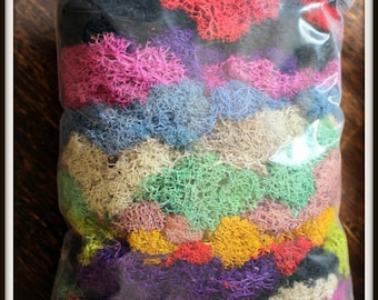 Bulk Soft Preserved Reindeer moss-16 oz bag in your color choice-Deer foot Moss-Black-Mango-Light blue-1 pound Bag Pr...