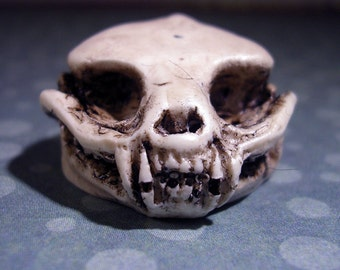 Faerie Bear tiny fantasy replica skull