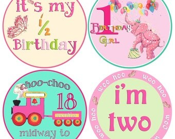 Baby Girl Month Stickers First Holidays Baby Stickers First Girl Holidays and Birthdays Montlhy Baby stickers Milestones
