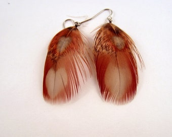 Feather Earrings Tragopan Pheasant