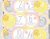 MONTHLY IRON ONS or Monthly stickers for Baby  - Baby girl - Sunshine StyleA26