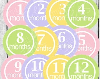MONTHLY IRON-ONS Decals or Monthly Stickers- 12 Monthly iron on heat transfer  Baby girl - Pink, purple, yellow & green - pastels(Style#A10)