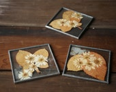 Hand Made Coasters Natural Pressed Flowers and Glass 70s Crafts Movement From Nowvintage on Etsy