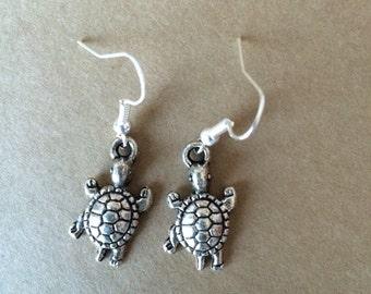 Little turtles