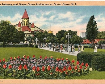 Vintage New Jersey Postcard - Pilgrim Pathway and the Great Auditorium at Ocean Grove (Unused)