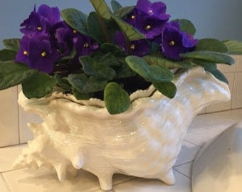 Violet pot, planter, self watering, queen conch shell, white, milk glass white, African violet planter, extra large