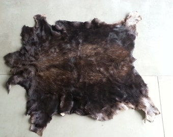 Large Shiras Moose Hide-  Soft tanned- Lot No. 24847Y