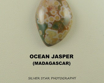 Ocean Jasper Freeform Designer Large Cabochon for Jewelry Artisans.