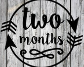 SVG, PNG, Monthly Milestone, Silhouette Cut File, Cricut Cut File, vector, Birthday, Month Onesie, Two Months