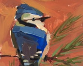 Blue Jay no. 31 original bird oil painting by Angela Moulton 6 x 6 inch on panel pre-order