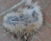 Real Beautiful Strip of Timber Wolf Fur - 12 inches