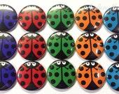 "Colorful Ladybugs 1"" Buttons, Lady Bug Pins, Ladybug Buttons, Ladybug Pinbacks, Lady Bug Flatbacks, Ladybugs, Ladybug Party Favor, Lady Bugs"