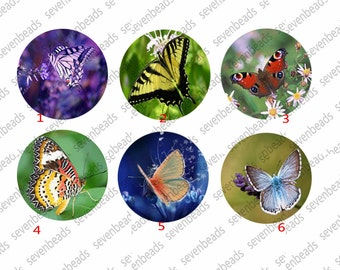 Butterfly Round Photo Glass Cabochons ,jewelry Cabochons finding beads,jewelry findings,Glass Cabochons,Round Cabochons,jewelry finding