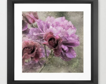 Wall Decor Photograph Dusty Pink Rose